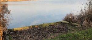 Fishing swim at Martello Lakes