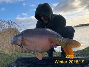 20lb - Winter 2018/2019